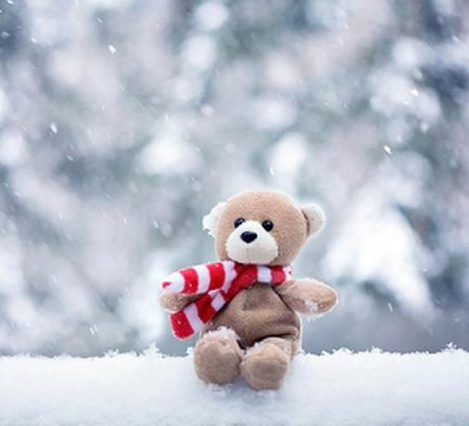 Teddy bear wallpaper hd android apps on google play teddy bear wallpaper hd screenshot voltagebd Gallery