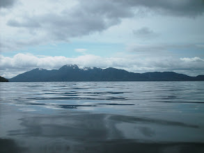 Photo: Wright Sound from Gribbell Island.