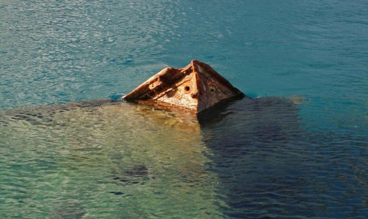Il nuotatore di carlo-bi