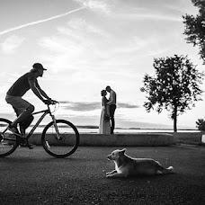 Свадебный фотограф Алена Супряга (supraha). Фотография от 10.09.2016