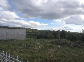 terrain à Tourouzelle (11)