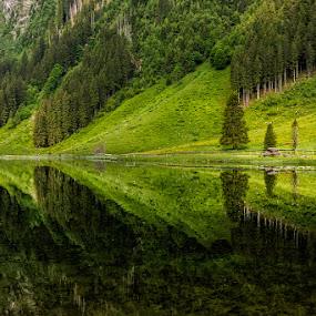 Reflectin by Hauk Tamas - Landscapes Mountains & Hills ( water, reflection, mountain, austria, alps )
