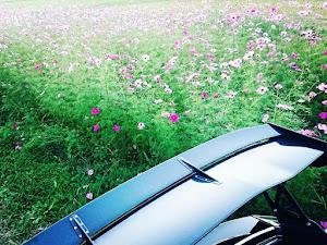 シビック FK7 ハッチバックのカスタム事例画像 NONNPIKO☆P.Pさんの2020年10月30日18:26の投稿