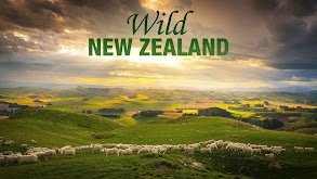Wild New Zealand thumbnail