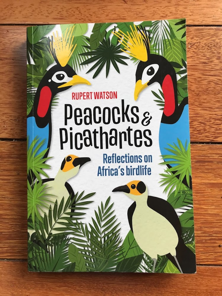 Peacocks and Picathartes: Reflections on Africa's Birdlife