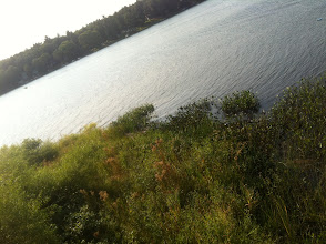 Photo: Another view of the lake.