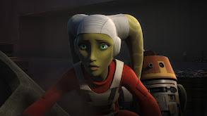 Rebel Assault thumbnail