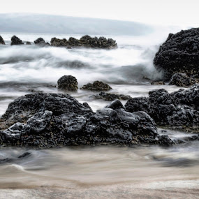 Mystic Reef by Adriano Sabagala - Artistic Objects Other Objects