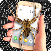 Spider on screen prank