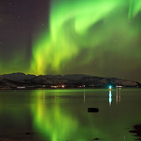 Aurora Borealis  by Kenneth Pettersen - Landscapes Starscapes ( aurora borealis, risøyrenna, northen light, andøy, norway )