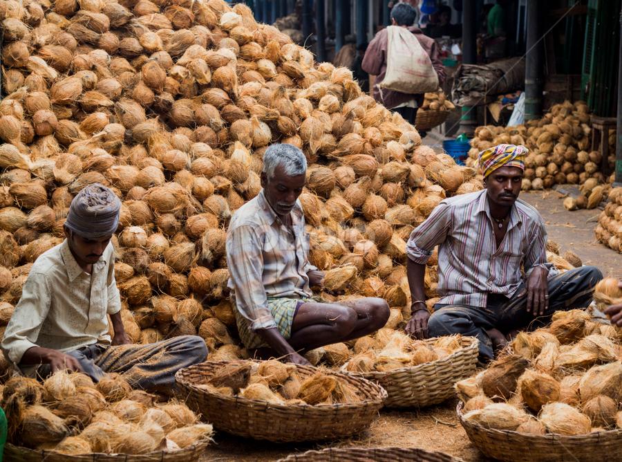 Coconut Men by Shishir Pal Singh - City,  Street & Park  Markets & Shops ( shishir, mysore, street, india, photostory )
