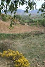 Photo: Vista del barranco de Isuela  (enviada por Martín Moreno)