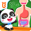 My Amazing Body - Educational Game For Kids