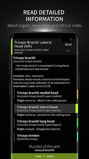 Anatomyka - 3D Human Anatomy Atlas 1.8.5 screenshots 3