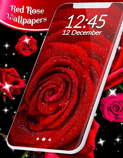 Red Rose Live Wallpaper  screenshots 6