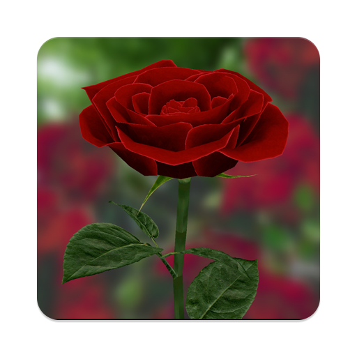 3d Rose Live Wallpaper Apps On Google Play