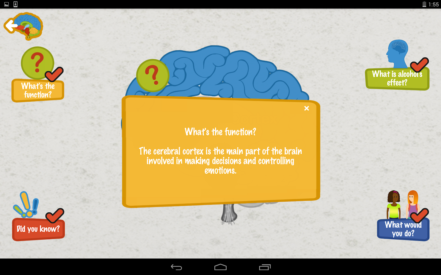 Alcohol's Effects on the Brain- screenshot
