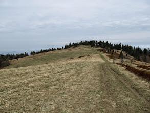 Photo: 19.Gorc Kamienicki (1160 m).