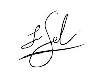 Le Sel logo