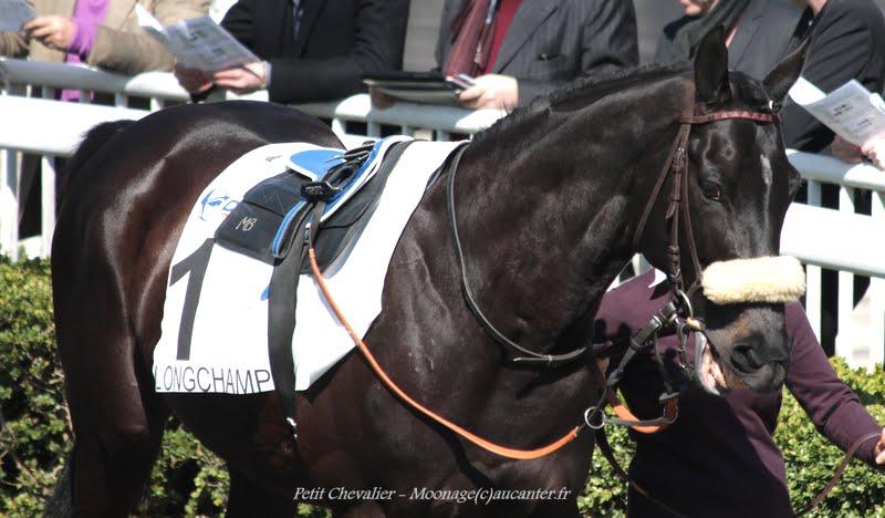 Photos Longchamp 6-04-2015  LPNp-yd3RwlfGcRc9QtPuECOkSQu2AM1PkGM9iJgojZo=w800-h468-no