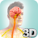Nervous System Anatomy Pro. icon