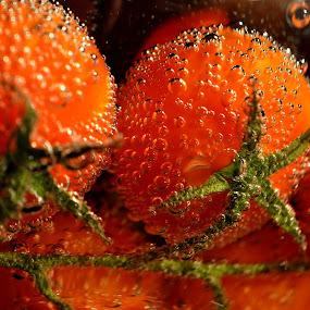 tomatoes by Albina Jasinskaite - Nature Up Close Gardens & Produce ( red, summer garden, pomidorai, vegetables, pwcvegetablegarden-dq, tomatoes, , jay goyani )