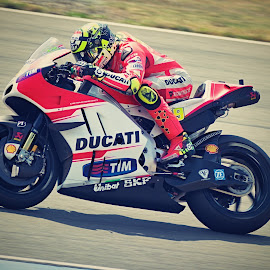 Ducati by Jiri Cetkovsky - Sports & Fitness Motorsports ( motogp, brno, iannone, grand prix, ducati, motorcycle, race )