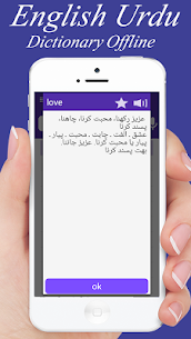 English to Urdu and Urdu to English Dictionary 4