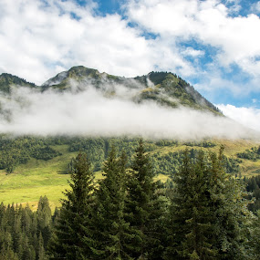 Mountain in the mist by Twan Konings - Landscapes Mountains & Hills ( clouds, sky, mountain, grass, green, trees, forest, travel, mist )