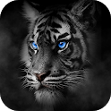 Roar Tiger Theme icon