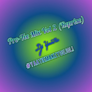 Pro-Tee mix vol 2 (Reprise) Upload Your Music Free