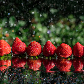 Strawberry Reflection by Jim Downey - Food & Drink Fruits & Vegetables ( water, strawberries, reflections, garden, droplets )