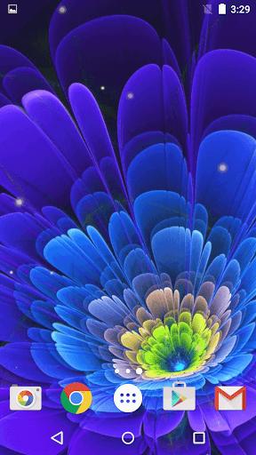 ネオンの花 ライブ壁紙