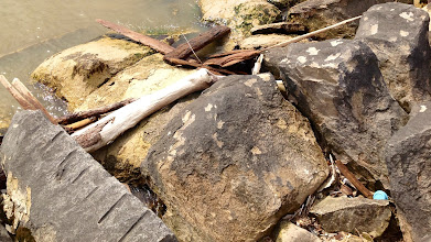 Photo: Muskegon Breakwater debris