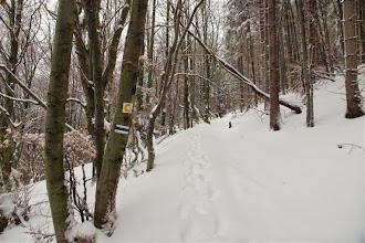 Photo: V oblasti kopca, ktorá sa nazýva aj Veľhora je hustá sieť cyklotrás