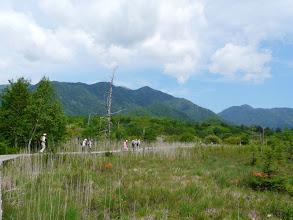 Photo: 木道歩き