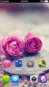 Pink Roses Theme C Launcher