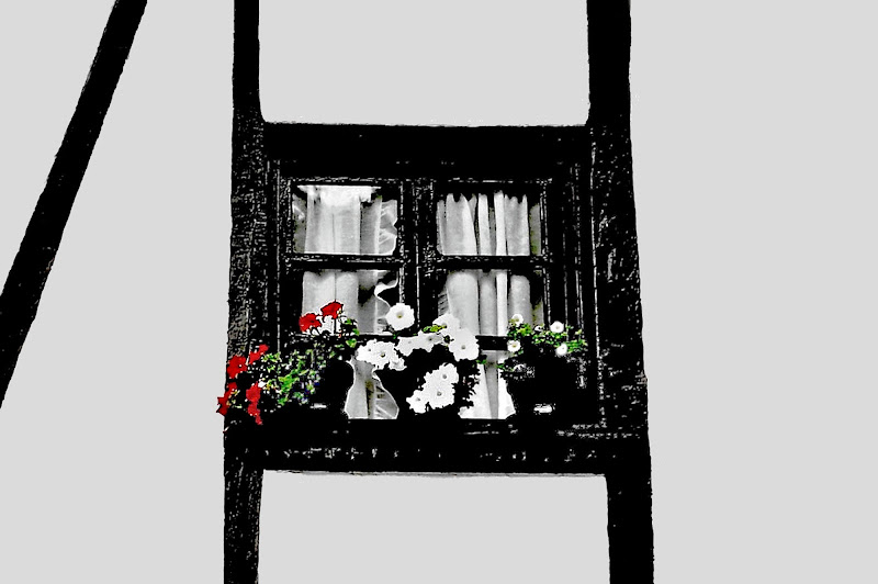 una finestra di ruggeri alessandro