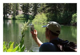 Photo: Eastern Sierras-20120716-480