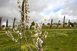 Photo: Alcorcón recibe a la primavera