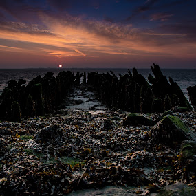 by Twan Konings - Landscapes Sunsets & Sunrises ( sea, night, beach, sunrise, landscape, netherlands )