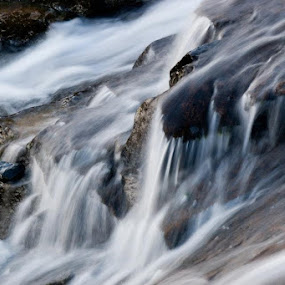 Falling by Gabrielle Libby - Nature Up Close Water