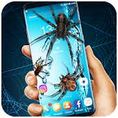 3D Spider on Screen Live Wallpaper for Prank