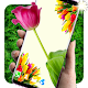 3D Tulips Parallax live wallpapers (app)