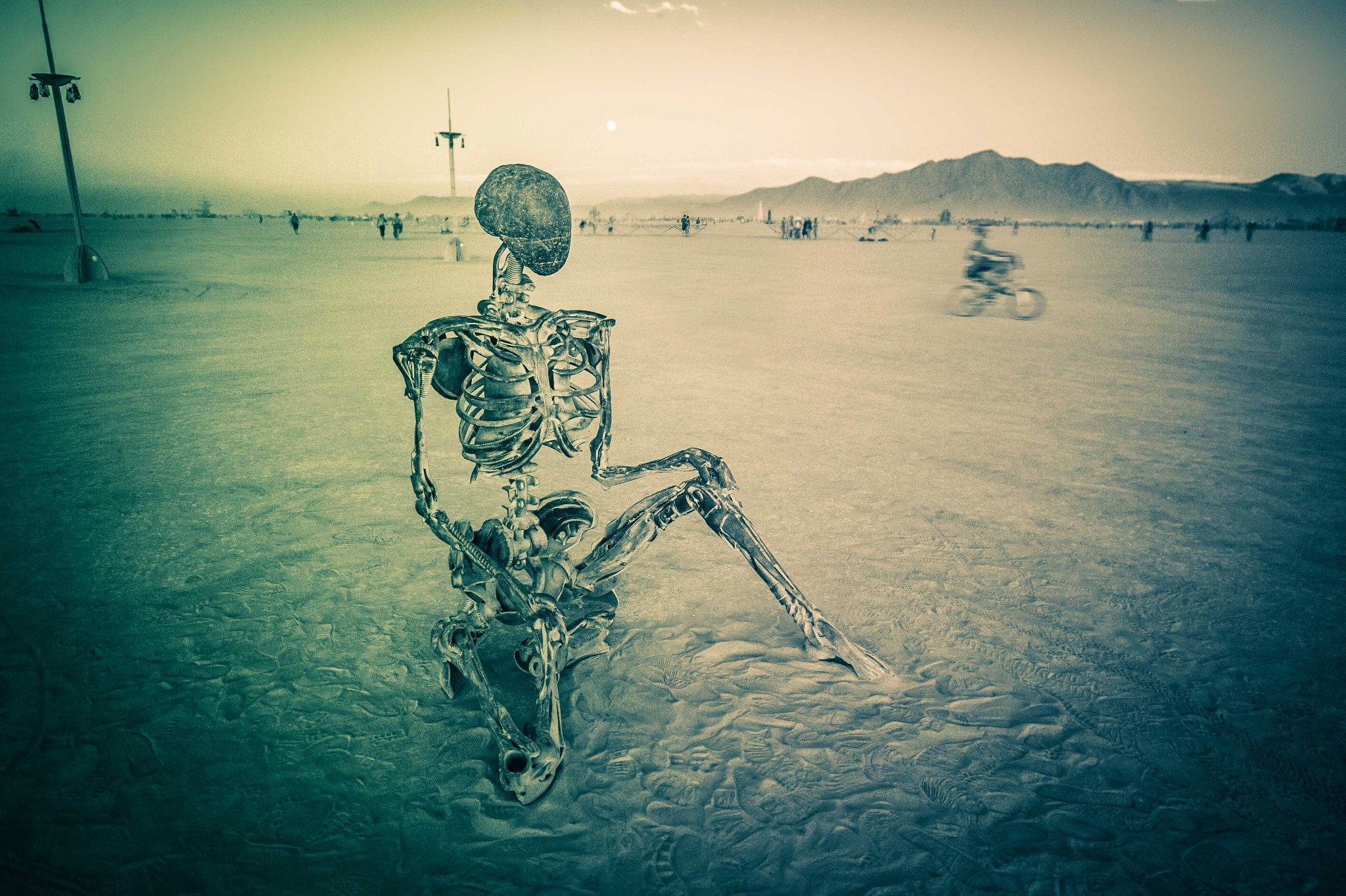 Photo: A huge skelton relaxes on the white sands...