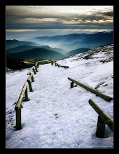 """Photo: Vosges in France, from the """"Grand Ballon"""""""