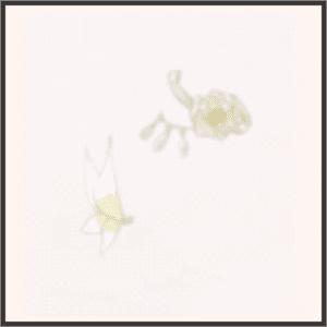 SR-舞蝶の散華