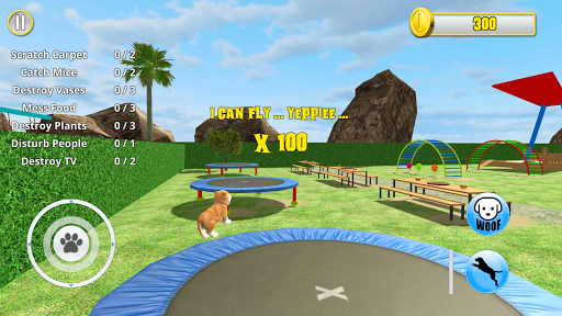 American Dog Simulator 1.0 screenshots 12