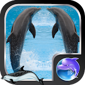 Dolphine Live Wallpaper