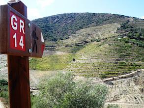 Photo: Os socalcos em Portugal